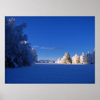 冬ポスター ポスター