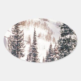 冬嵐ブライトンユタの前の平静 楕円形シール