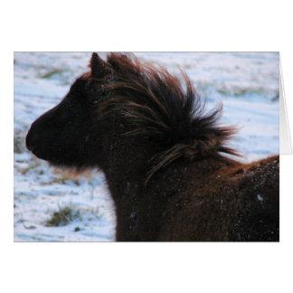 冬、クリスマスの小型雌の子馬 カード