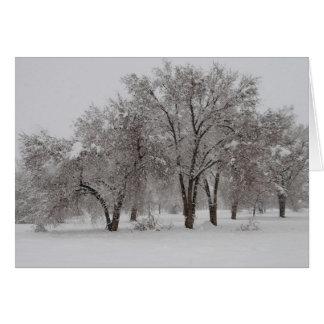 冬Dreamscape カード