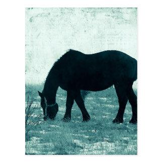 冬Percheron ポストカード