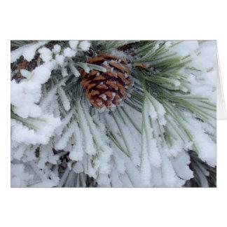 冬Pinecone カード
