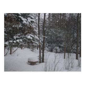 冷たい冬の日 ポストカード