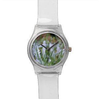 凍結する冬の草 腕時計