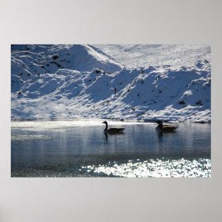 凍結する池 ポスター