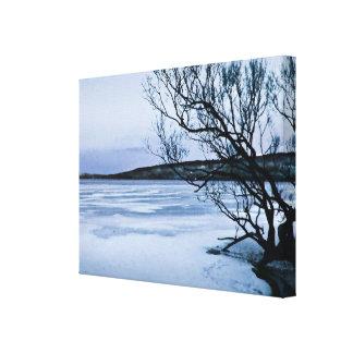 凍結する湖 キャンバスプリント
