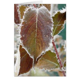 凍結する秋 カード