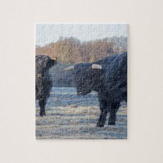 凍結する草原の2人の黒いスコットランドの高地居住者 ジグソーパズル