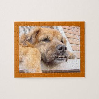 出っ歯を搭載する犬 ジグソーパズル
