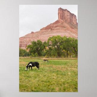出入口、コロラド州の柵 ポスター