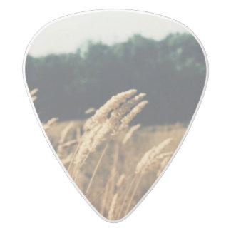 分野のギターピック ホワイトデルリン ギターピック