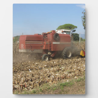 分野のトウモロコシの穀物を収穫するコンバイン フォトプラーク