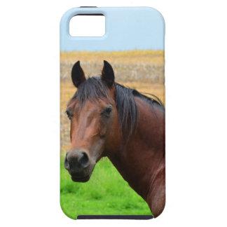 分野のブラウンの馬 iPhone SE/5/5s ケース