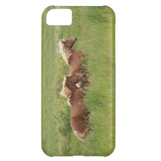分野の写真の2頭のゆっくりと駆けていくPalominoの馬 iPhone5Cケース
