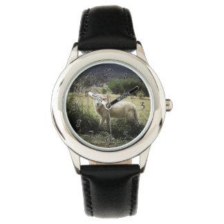 分野の塀の後ろの小さく白い子ヒツジ 腕時計