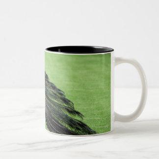 分野の孔雀 ツートーンマグカップ