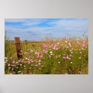 分野の宇宙の花 ポスター
