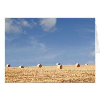 分野の干し草ベール カード
