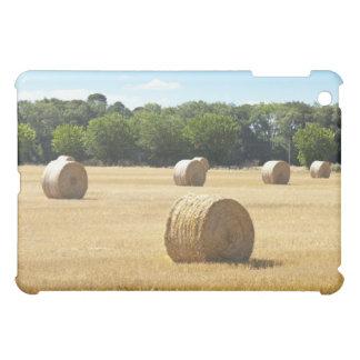 分野の干し草、フランス iPad MINIケース