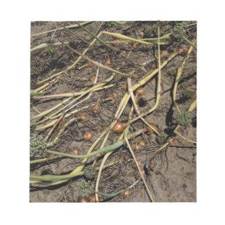 分野の臭いタマネギの穀物 ノートパッド