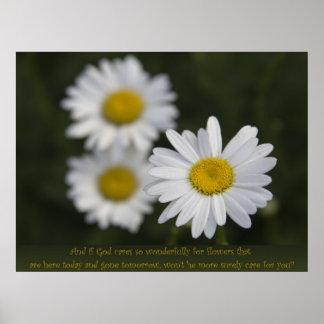 分野の花 ポスター