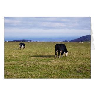分野の見落としの牛の牧歌的な場面 カード