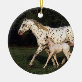 分野のAppaloosaのロバそして子馬 セラミックオーナメント