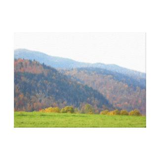 分野及び山の秋のAdirondacks キャンバスプリント