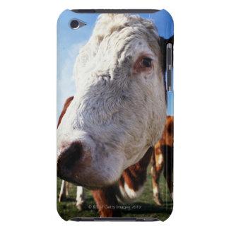 分野、クローズアップの牛 Case-Mate iPod TOUCH ケース