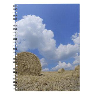 分野、PienzaのValのd'Orcia、シエナの干し草ベール ノートブック