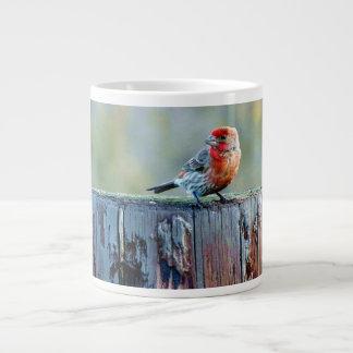 切り株のフィンチ ジャンボコーヒーマグカップ