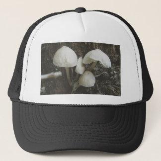 切り株の帽子のきのこ キャップ