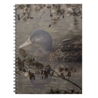 初期のな国屋外湖の池の野ガモ ノートブック