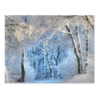 別の冬の不思議の国 ポストカード