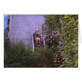 別荘のオーロラ カード
