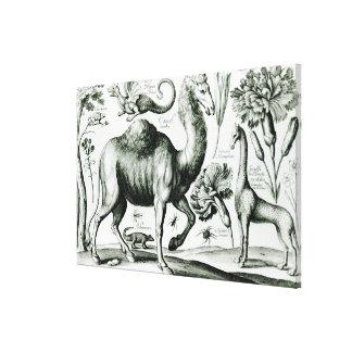 刻まれる動物および花の勉強 キャンバスプリント