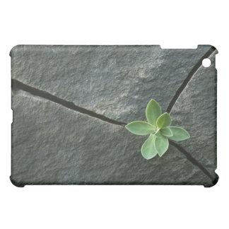 割れた大きい石で育つ植物 iPad MINIケース