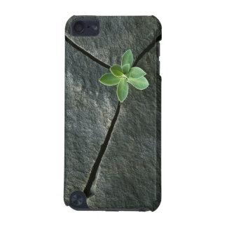 割れた大きい石で育つ植物 iPod TOUCH 5G ケース