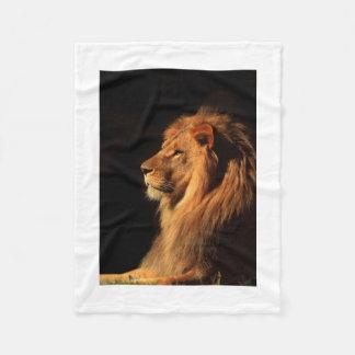 劇的なアフリカのライオンのポートレートのフリースブランケット フリースブランケット