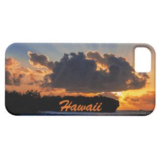 劇的なカウアイ島の日の出の電話箱 iPhone SE/5/5s ケース