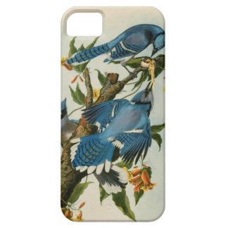 劇的なヴィンテージのBlue JaysのiPhone 5/5Sの場合 iPhone SE/5/5s ケース