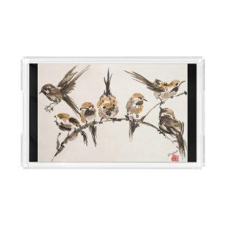加重された鳥の虚栄心の皿 アクリルトレー