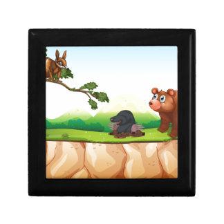 動物および崖 ギフトボックス