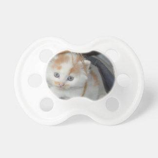 動物のかわいい子ネコの子猫は猫をかわいがります おしゃぶり
