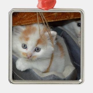 動物のかわいい子ネコの子猫は猫をかわいがります メタルオーナメント