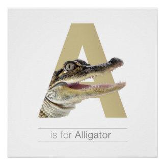 動物のアルファベットの養樹園の壁の芸術。 A -わに ポスター