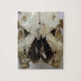 動物のスカルの写真 ジグソーパズル