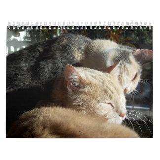 動物の変化2011年7月- 2012年6月 カレンダー