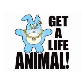 動物の悪いパンの生命 ポストカード