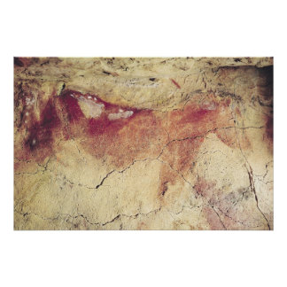 動物の表示、紀元前のc.15000 ポスター